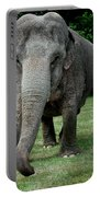 Elephant Greet Portable Battery Charger