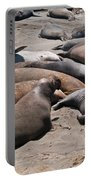 Elephant Seal Colony On Big Sur  Portable Battery Charger