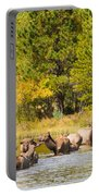 Elk Herd With Autumn Colors Portable Battery Charger