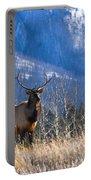Elk In Forest, Banff National Park Portable Battery Charger