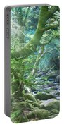 Enchanted Leprechaun Forest Portable Battery Charger