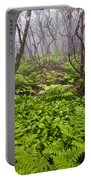 Enchanted Woodland Forest In Fog Blue Ridge Parkway In North Carolina Portable Battery Charger