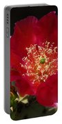 Englemann's Prickly Pear Cactus  Portable Battery Charger