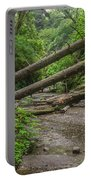 Entrance To Fern Canyon Portable Battery Charger