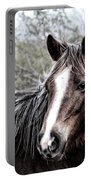 Equine Trance Portable Battery Charger