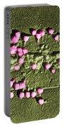 Escherichia Coli On A Cell Wall Portable Battery Charger