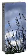 Evening Grass Portable Battery Charger