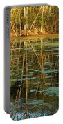Evening Light On Missouri Pond 2 Portable Battery Charger