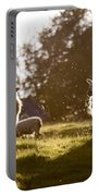 Evening On The Meadow Portable Battery Charger