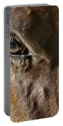 Eye Of The Horse Portable Battery Charger