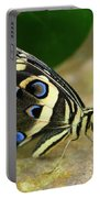 Eye To Eye With A Butterfly Portable Battery Charger
