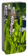 Fabulous Water Hyacinth  Portable Battery Charger