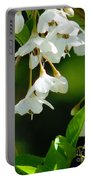 Faerie Bells 2 Portable Battery Charger