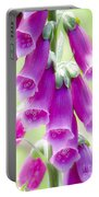 Faerie Bells Portable Battery Charger by Rory Sagner