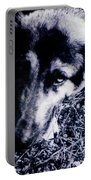 Faithful Friend Portable Battery Charger