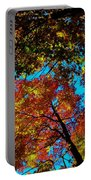 Fall Arrives ... Portable Battery Charger