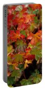 Fall Brilliance Portable Battery Charger