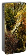 Fall Color Wall Art Landscape Portable Battery Charger
