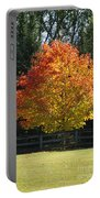 Fall Colored Tree Portable Battery Charger