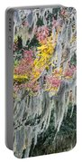 Fall Colors In Spanish Moss Portable Battery Charger