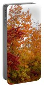 Fall Filled Sky Portable Battery Charger