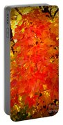 Fall Foliage Portable Battery Charger