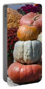 Fall Harvest Colorful Gourds 7968 Portable Battery Charger
