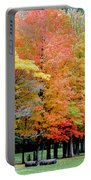Fall In Michigan Portable Battery Charger by Optical Playground By MP Ray