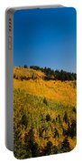fall in Ruidoso Portable Battery Charger