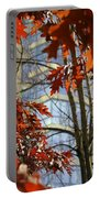 Fall In The City 1 Portable Battery Charger