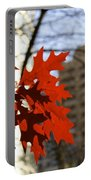 Fall In The City 2 Portable Battery Charger