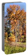 Fall In The Foothills Portable Battery Charger