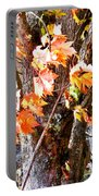 Fall Leaves 2 Portable Battery Charger