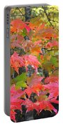 Fall Leaves Filtered Portable Battery Charger