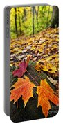 Fall Leaves In Forest Portable Battery Charger