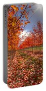 Fall Line Up Portable Battery Charger