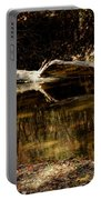 Fall Log Reflection Portable Battery Charger