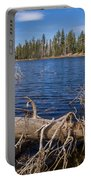 Fall Logs On Reflection Lake Portable Battery Charger