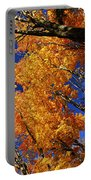 Fall Maple Treetops Portable Battery Charger