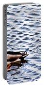 Fall Millards Swiming Portable Battery Charger