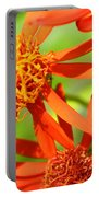 Fall Orange Flowers Portable Battery Charger