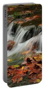 Fall Rush Portable Battery Charger