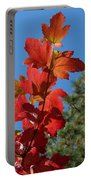 Fall Snowball Branch Portable Battery Charger