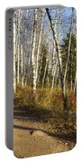 Fall Trail Scene 35 A Portable Battery Charger