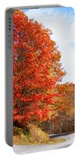 Fall Tree By The Road Portable Battery Charger