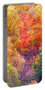 Fall Trees 3 Portable Battery Charger