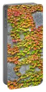 Fall Wall Portable Battery Charger