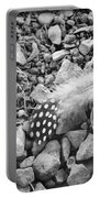 Fallen Feathers Black And White Portable Battery Charger