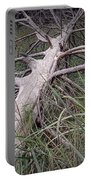 Fallen Pine Tree Portable Battery Charger