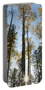 Falling Sunlight Fort Mcmurray Portable Battery Charger